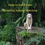 Deep in the Jungle - My Deep Satisfaction reworked June Mix 2014