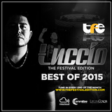 Luccio Presents: The Festival Edition Best of 2015
