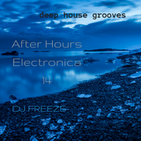 After Hours Electronica 14 \\ mixed by Freeze