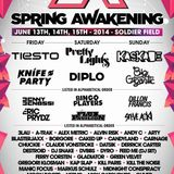 Blasterjaxx - Spring Awakening Music Festival 2014 - Day 3 Main Stage 1