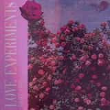 djFlippy - Love Experiments Part One