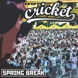 Cricket - Spring Break:Extreme 15' Set