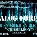 Domi - Analog Forest 18.12.2015