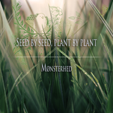 Mønsterhed - Seed by seed, plant by plant
