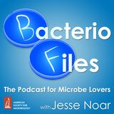 BacterioFiles 275 - Building Bacterial Batteries