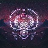 Electro House Mix #025 (02/12/16)