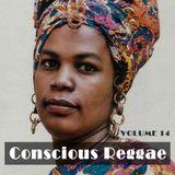 Conscious Vol 14 - Chuck Melody