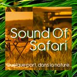 Sound Of Safari / Cris Arcas Part1 /  June 2014 /