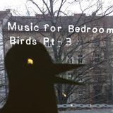 Music for Bedroom Birds part 3
