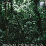 Repeat Please!!! Forest by NoCoast Orchestra & Lo