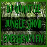 #85 Emergency FM - Jungle Show - Oct 7th 2014