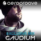 Gaudium - Xmas Set 2012 [www.aero-groove.com]