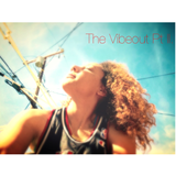 The Vibeout Pt. II