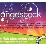 collins303 LIVE @ Flangestock 2012