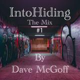Into Hiding #1