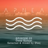 Episode 22 - Deep Sunset - Selected & mixed by Øsej