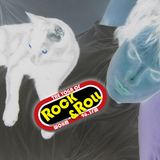 The Yoga Of Rock & Roll Ep.13 Conversation Episode feat Kim S. Our companions are sick!, etc