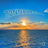 Zonnelicht # 01 Rob Mehl/Incarnations/Cantoma/Paqua/Calvin Johnson/Paul McCartney/John Makin