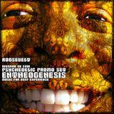 DJ_Roosevelt_Entheogenesis_[promo set_inverno de 2008]