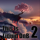 This is Liquid DnB 2
