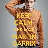 martin garrix t-mashup