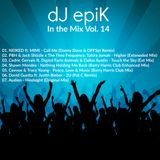 dJ epiK - In the Mix Vol. 14
