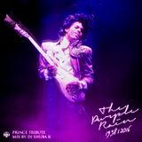 TRIBUTE TO PRINCE - THE PURPLE RAIN - LIVE MIX 2016