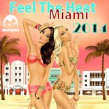Feel The Heat Miami 2014