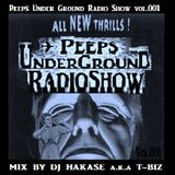 "NevaSleepers.com presents... ""PeepsUnderGroundRadioShow""  vol.001 Mix By T-BIZ(UTTS studio)"