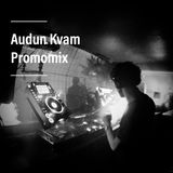 Audun Kvam Promomix