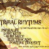 Tribal Rhythms (Main Stage)