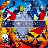 Bi☣ Z☢unds - After Hours vol. 5- Zandungueo (March 2K17 Podcast)
