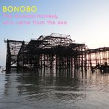 Bonobo: The Musical Monkey who came from the Sea