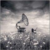 Audiophilet - Dream Catcher