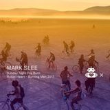 Mark Slee - Robot Heart 10 Year Anniversary - Burning Man 2017