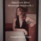 Digital Love Affairs Downtempo Selection Pt. 1