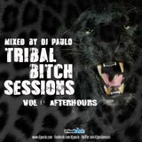 TRIBAL BITCH SESSIONS Vol 1 (Afterhours) - DJ  PAULO