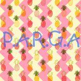 PARGA _ DJSet_Nov_2014_