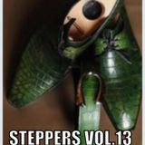 Steppers Vol.13