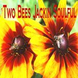 Two Bees Jackin Soulful