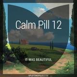 Calm Pill 12 - It Was Beautiful (First Half)