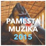 PAMESTA MUZIKA 2015