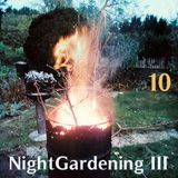 DatschaRadio19 NightGardening III10
