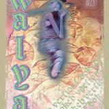 Bokeh Versions w/ Walya - 31st July 2019