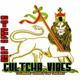 Mi Culture Vybz 2010