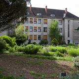 CLA, dans la cour de Babel / Jardin botanique, la fac de sciences déménage ! - UniversCité (6.07.17)