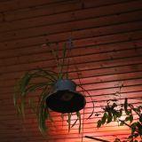 Snugfits op de Fiets - Living Room Easter Sessions - Blues Jam