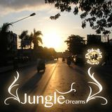 Destination Sound - Jungle Dreams Mixtape