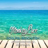 MonkeyFace - Soulful Beach Mix