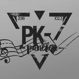 PK #9 – Musikpanelen